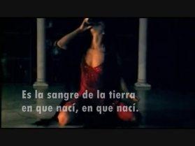 045 - Bulería - David Bisbal 2
